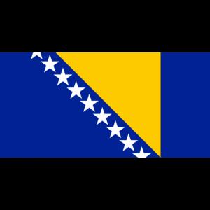 Bosna Hersek Bayrağı