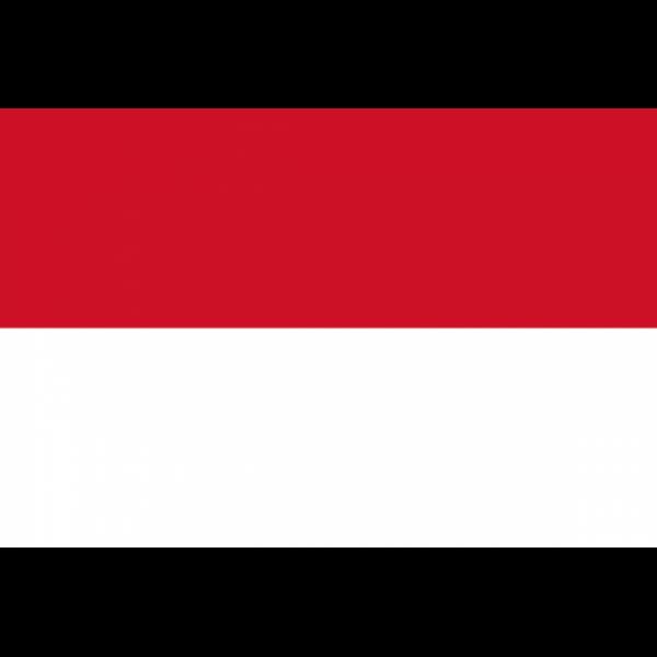 Endonezya Bayrağı